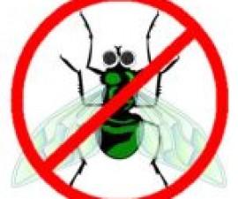 anti-virus-problems