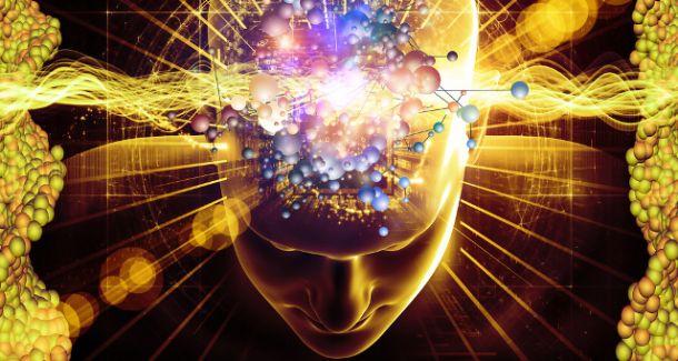 human_brain_computer